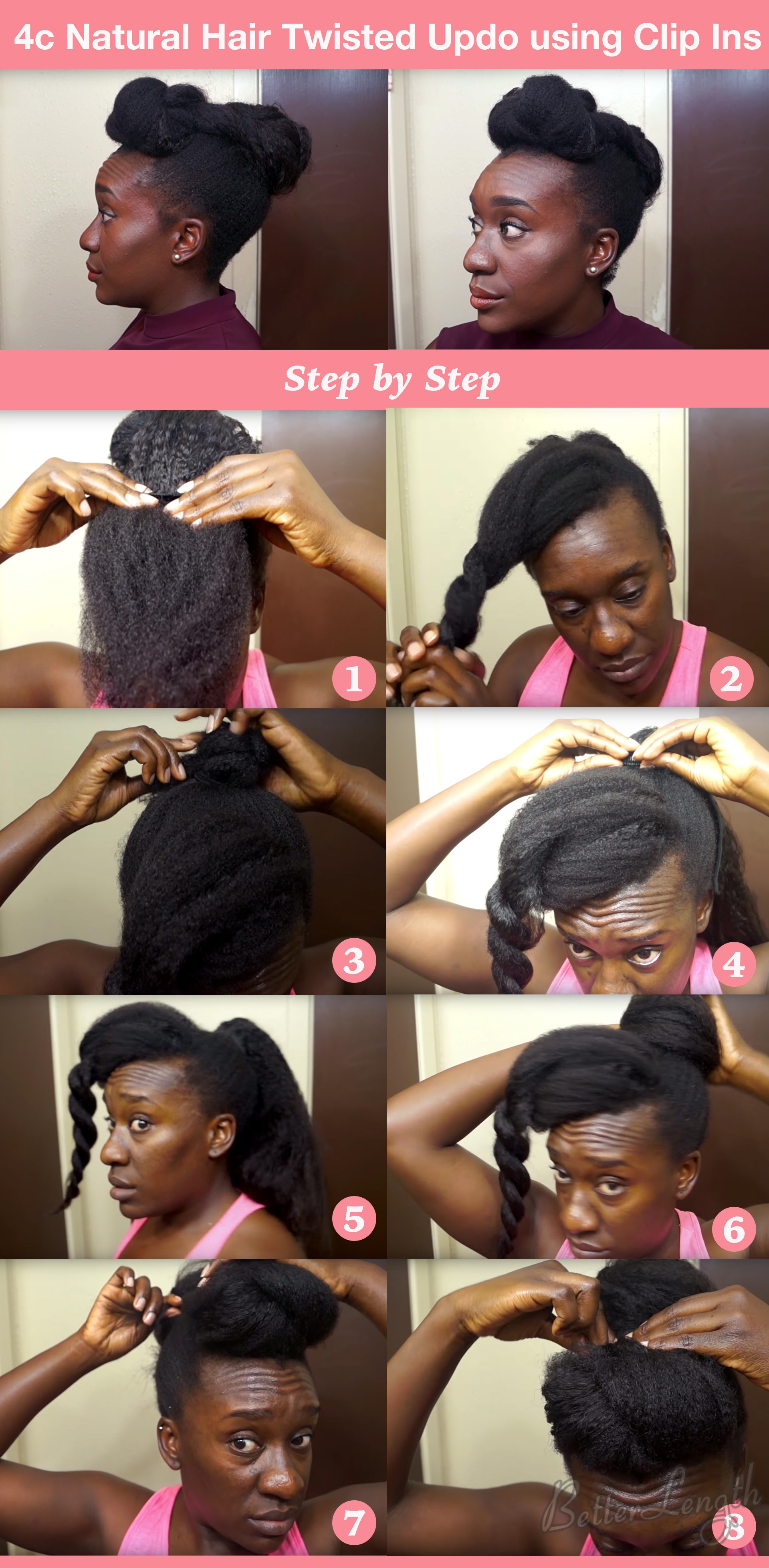 twistedupdo - TOP 6 Quick & Easy Natural Hair Updos