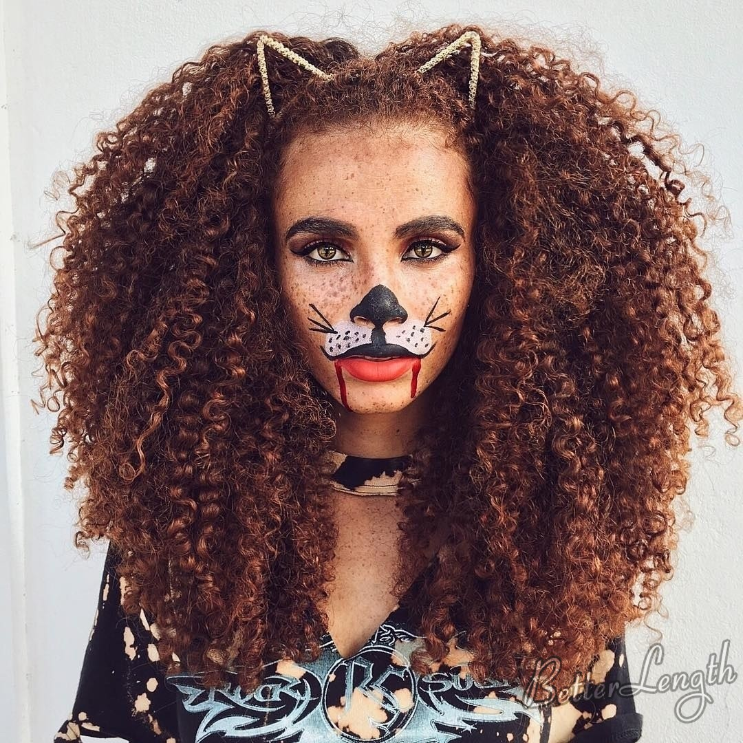 lion hairstyle - 2019 Best Halloween Hairstyles for Natural Hair